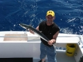 mackerel-2.jpg_backup