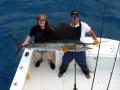 sailfish-2.jpg_backup