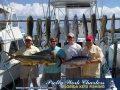 11-05-16-web-chuck-sieber-dolphin-blackfin.jpg