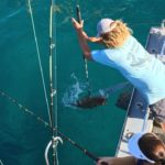 Islamorada offshore fishing report good gaff