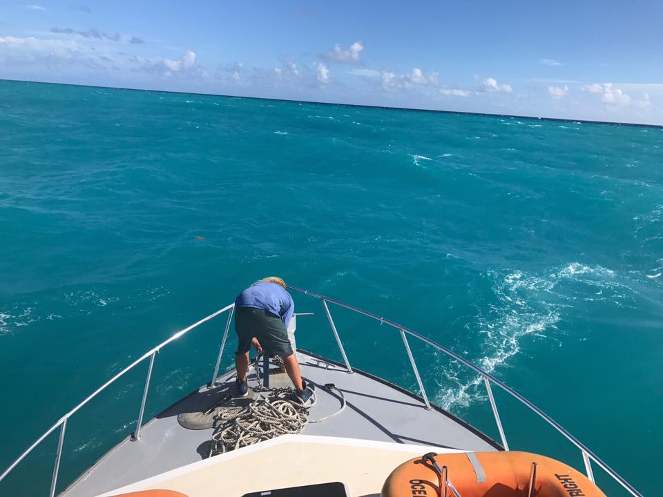 Islamorada charter fishing report december 2016 pretty for Islamorada fishing charters