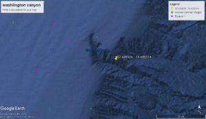 Washington Canyon offshore fishing report