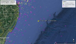 Live offshore fishing report hot dog