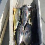 Islamorada October fishing